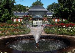 Relajacin (Lourdes.Prez) Tags: roses house flores water casa agua frankfurt fuente banco font rosas flowes