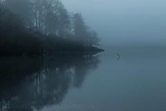 Loch Ard (GenerationX) Tags: trees mist water rock sunrise reflections landscape dawn mono mirror scotland still cross unitedkingdom foggy scottish neil calm blank loch trossachs barr gloaming aberfoyle lochard kinlochard lochardforest