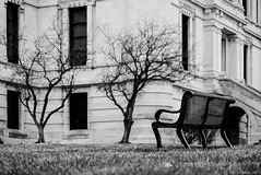 Courthouse Lawn (D A Baker) Tags: park county city bench lawn indiana columbia parkbench whitley