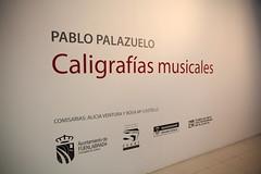 PABLO PALAZUELO (1)