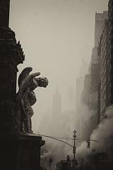 New York (Marat Elkanidze) Tags: newyork manhattan angels