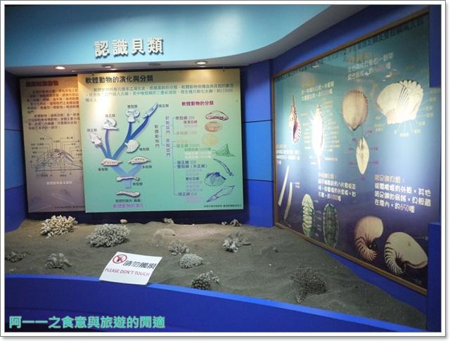 台東成功景點三仙台台東縣自然史教育館貝殼岩石肉形石image009