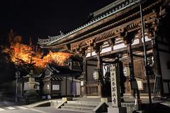 HD7C9658-1  (JB ) Tags: red japan canon temple leaf kyoto collection   lightup jb  nara kansai redleaf ef2470mmf28lusm     ef1635mmf28liiusm   5dmki 5dmkiii ef70200mmf28lisiiusm jb  tenjuan  tofukuji daigoji bishamondo oharanoshrine yoshinoyama kifunejinja tenkawavillage tenjuan zuiganzanenkouji tomishrine ishiyamadera kitanotenmangu kiyomizudera eikando