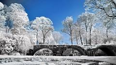 3 ponts (ir) (Yasmine Hens) Tags: ir europa flickr belgium ngc bridges infrared ponts namur hens yasmine wallonie 720nm infrarouge iamflickr flickrunitedaward hensyasmine