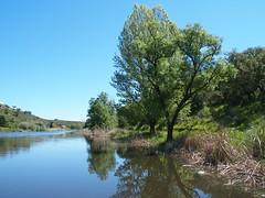Ribeiro (rgrant_97) Tags: portugal nature natureza abril alentejo fronteira alterdocho