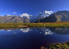 morning reflection of chaukhamba & mandani peak on buda madmaheswar tal (avra.ghosh) Tags: travel reflection nature trekking trek hiking himalaya garhwal uttarakhand mandani chaukhamba chowkhamba madmaheswar choukhamba budamadmaheswar madmaheswartrek buramadmaheswar