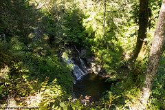 Bloedel Creek Falls (Brad Darling Photography) Tags: creek waterfall explore remote secluded
