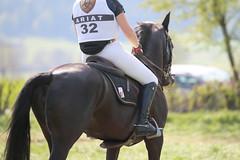 IMG_0109 (dreiwn) Tags: horse horseshow equestrian horseback reiten horseriding showjumping gelnde eventing marbach reitturnier vielseitigkeit reitsport pferdekopf pferdesport springreiten gelndestrecke eventingmarbach