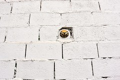 Intra Larue 690 (intra.larue) Tags: street urban art breast arte pit granada urbano teta sein grenade moulding espagne andalousie espagna urbain pecho intra espanya formen seno brust moulage tton andalouzia