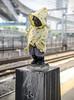 (Kilometers) Tags: tokyo mannekinpis yamanoteline hamamatsuchōstation