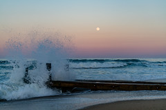 _DSC1360 (chriswheatley97) Tags: obx outer banks nc north carolina beach night moon sunset ocean