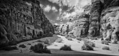 Desert Pathways (madcityfinearts) Tags: jordan wadirum bedouin desert cliffs sand sandstone landscape travel
