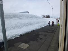 15j5527 (kimagurenote) Tags: snow  sumon   tadamiline    uonumaniigata echigosuharastation