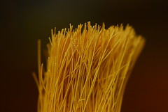 Crop (MPnormaleye) Tags: abstract macro kitchen strange yellow closeup weird brush equipment textures utata bristles magnified