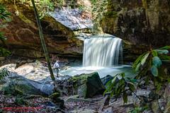 Dog Slaughter Falls (mikerhicks) Tags: usa geotagged spring unitedstates hiking kentucky waterfalls honeybee hdr corbin photomatix dogslaughterfalls cumberlandfallsstateresortpark sigma18250mmf3563dcmacrooshsm canoneos7dmkii geo:lat=3685876167 geo:lon=8431224000