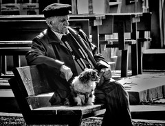 Old man with dog (Constantin Florea) Tags: life street city portrait people urban blackandwhite bw dog man face animals canon blackwhite candid streetphotography streetphoto capture