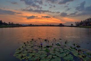 Taman Tema Tasik Darul Aman Sunset