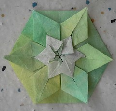 Star 1-B (modular.dodecahedron) Tags: watercolourpencil origamistar tomokofuse