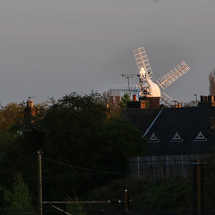Holgate Windmill from the north, evening - 1