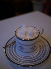 Hot Chocolate with Marshmallows (Long Sleeper) Tags: cup japan cafe drink kamakura hotchocolate marshmallow marshmallows cocoa kanagawa komachi saucer dmcgx1 iwatacoffeehouse