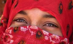 """Esos ojos que me miran"" (josepponsibusquet.) Tags: algeria rojo chica desert ojos desierto vermell mirada reflexos noia reflejos jove joven ulls argelia tindouf roig tinduf refugiados campaments melfa campamentos dajla refugiats sukeina sahraus saharaus dajkla saharus"