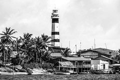 Farol Preguias (felipe sahd) Tags: brasil noiretblanc maranho mandacaru 123bw riopreguias litoralnordestino farolpreguias