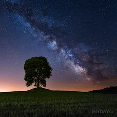 La tte dans les toiles. (Bob Guedin) Tags: sky night canon way long exposure milky 6d 14mm samyang