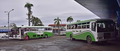 Lautoka Bus Station (D70) Tags: windows bus classic buses up station fiji canvas plastic ltd hino position lautoka