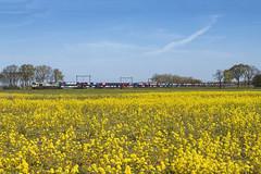 Nispen, 4 mei 2016 | Captrain 6605 (266 005) (Jeroen de Vries.) Tags: car train gm zug citron rape raps brabant trein psa peugot roosendaal treni class66 koolzaad gefco nispen captrain