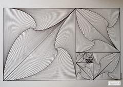20160426 (regolo54) Tags: pattern handmade geometry symmetry fibonacci escher