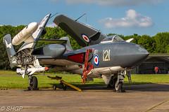 De Havilland Sea Vixen FAW.2 XJ494, Cold War Jets Open day, Bruntingthorpe, 29 May 16 (SHGP) Tags: sea cold plane canon de war day fighter open aircraft aviation jets navy jet royal sigma vixen havilland bruntingthorpe faw2 xj494 18250mm 700d