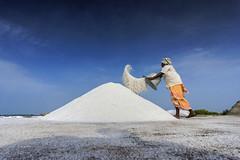 @SaltPans, Marakkanam (ayashok photography) Tags: ayp4262 aykon ayashok nikon marakkanam salt pans saltpan woman working hardlife 2016 nikond810 tokina1735mm