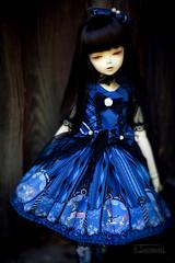 unicorns in blue (koroa) Tags: white doll skin may v fairy lolita tiny bjd bluefairy feeriedoll feeriedollatelier