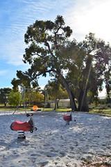 Doongin Park Greenfields (PlayRight Australia) Tags: park racer playgrounds greenfields kompan birdsnestswing playrightaustralia
