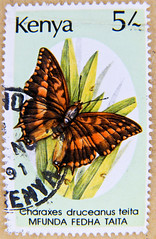 great stamp Kenya 5.00 Sh (Silver-barred Emperor, Charaxes druceanus teita [van Someren], butterfly, vlinder, Schmetterling, papillon, , sommerfugl, liblikas, , perhonen, mariposa, pillang, kelebek, , farfalla, , , borboleta 5Sh (thx for sending stamps :) stampolina) Tags: africa butterfly postes kenya stamps stamp papillon borboleta afrika mariposa timbre kenia postage shilling farfalla sommerfugl schmetterling vlinder  perhonen selo marka bolli sello sellos kelebek  postagestamps briefmarken pulu briefmarke motyl   francobollo selos   pillang timbres timbreposte francobolli bollo  liblikas timbresposte leptir mot qunia  timbru tauri   postapulu  perangkoperangko silverbarredemperor charaxesdruceanusteita