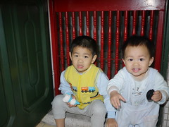 37580544 (wdshieh) Tags: 20110121