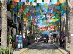 Calle Delfines
