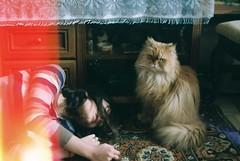 ^^ (OlyaD.) Tags: light people house color film home me girl analog cat 35mm hair photo spring hands kodak zenit tenderness