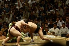 日馬富士 画像24