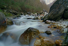 Serra (Darea62) Tags: apuans malbacco rocks stream stones longexposure wood seravezza river creek alpiapuane versilia waterfall forest montealtissimo nature