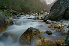 Serra (Darea62) Tags: wild nature river rocks stream stones silk serra versilia a230 altissimo apuans malbacco