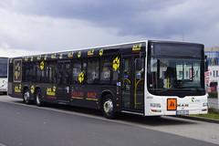 MAN Lion's City L  VVR 8724 met kenteken RG NV 75 in Sassnitz 24-04-2016 (marcelwijers) Tags: city man bus coach nv lions l met 75 autobus sassnitz kenteken vvr lijnbus 8724 linienbus rg kenzeichen sreekbus 24042016