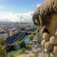 (tugasgm) Tags: paris de la cit notredame cathdrale le passage tours et arrondissement glise gothique dans forme lest courte visiteurs larchitecture plerins lle larchidiocse 4