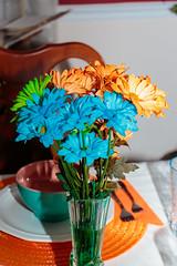 Brianna Jeffiers Prom-011_print (Susie Colburn) Tags: usa kentucky unitedstatesofamerica paintsville