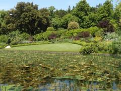 The Garden I, Dyrham Park, Gloucestershire, 6 June 2016 (AndrewDixon2812) Tags: park bath cotswolds gloucestershire nationaltrust cotswold dyrham