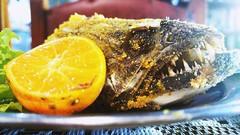 no fear (Rodrigo Alceu Dispor) Tags: food fish lemon teeth porn malabaricus trara lob hoplias
