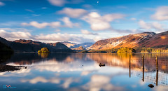 Derwent Water Morning (Dave Massey Photography) Tags: reflections lakedistrict calm cumbria serene derwentwater