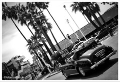 IMG_7028 (alberto pizzoli) Tags: street blackandwhite bw cinema france monochrome cotedazur cannes streetphotography streetphoto frenchriviera festivaldecannes cannes2016 fif2016 cannesfilmfestival2016