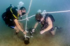 U.S. Navy, Vietnam People's Navy Target Explosive Remnants of War (#PACOM) Tags: underwater diving vietnam eod uxo humanitarian vn eodmu5 fleetcombatcamerapacific vietnampeoplesnavy ctf75 mc3alfredacoffield vietnamhma