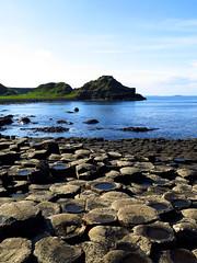 0004 (PalmerJZ) Tags: travel ireland castle scotland whisky scotch falconry